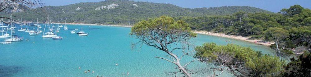 Les pins, le sable et la Mer ...